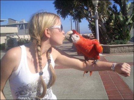 Parrot, kiss, love, gratitude, laguna beach